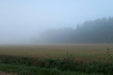 Autum fog 101 by MASYON