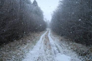 Snow 33 by MASYON