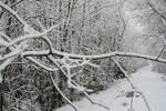 Winter 205 by MASYON