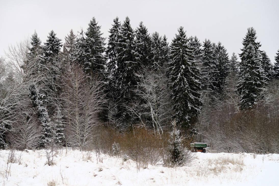 Winter 229 by MASYON