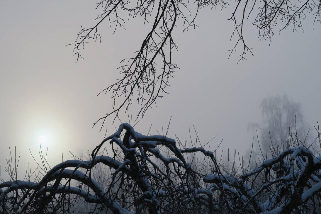 Moisakula fog 91 by MASYON