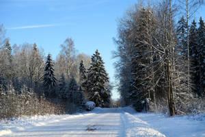Winter 77 by MASYON