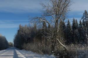 Winter 83 by MASYON