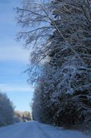 Winter 85 by MASYON