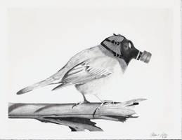 Bird of the future by bolduke