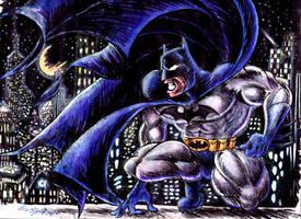 Batman by blackhellcat