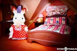 Sylvanian Families Test Shot 1 by raveka
