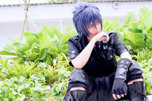 Noctis - Cosfest 2017 by raveka