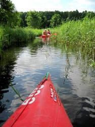 Canoeing and safari by jajafilm