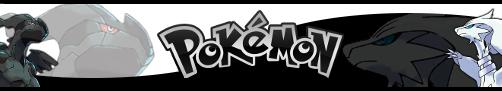Pokemon Black and White Banner by Uprisen257