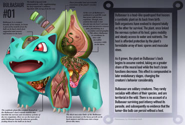 Bulbasaur Anatomy- Pokedex Entry by Christopher-Stoll