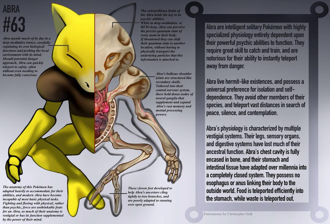 Abra Anatomy- Pokedex Entry by Christopher-Stoll
