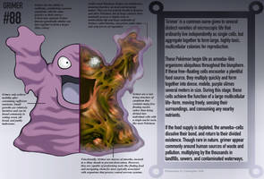Grimer Anatomy- Pokedex Entry by Christopher-Stoll