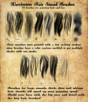 Warriortree Hair Brushes Premium by jekylnhyde