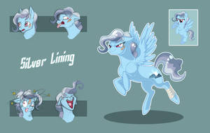 Silver Lining Bio by Vindhov