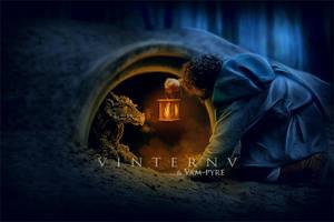 The Encounter by VinternV