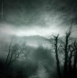 Dream forest by Vittorio-Pellazza