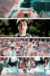 hunger games funny twist by dleduc