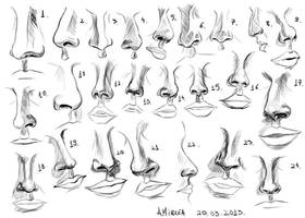 Noses by amircea