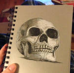 Just a skull by amonkeyonacid