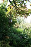 Garden Stock02 by KLStock