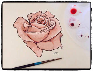 rose by lolobild