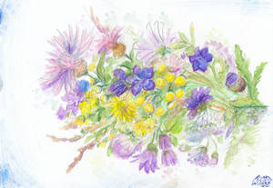 Wild Flowers by Liris-san
