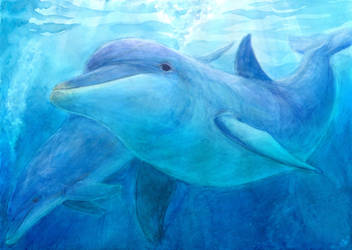 Meeting with Dolphins by Liris-san
