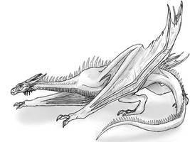 Wyvern Sketch by xXDarkCatXx
