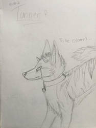 Sketch for Aki-ji by animalover4six