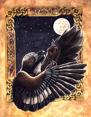 The Storyteller by Illahie