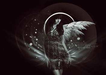Broken Wings by TheMeltingSun