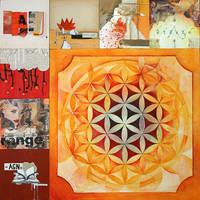 Orange - the dA project by Pachita