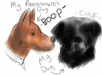 Feels- Dog and Dog by Shrone