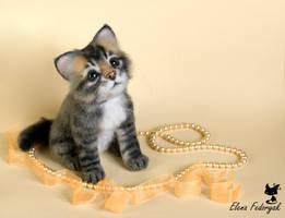 Kitten Njashka by KittenBlackUA