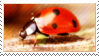 Ladybird Stamp by mylastel
