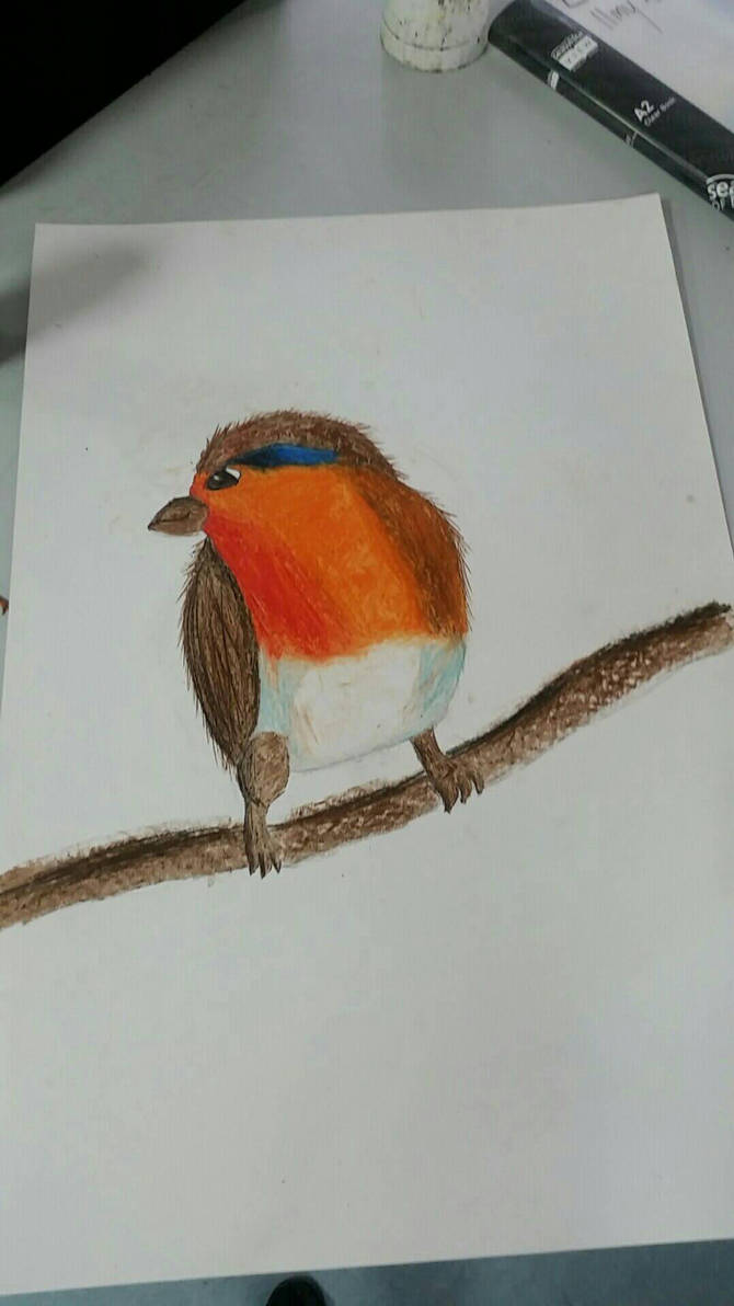half finished art exam by Kleoponpon