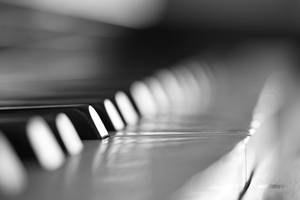 The One piano key by saeppo