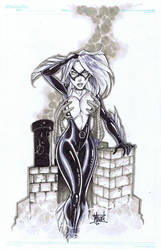 BLack Cat and Spidey rooftop by billmausart