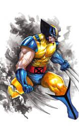 Wolverine by orphanshadow