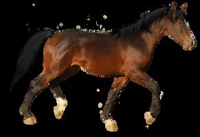 Precut Horse 1 by PanchieStock