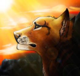 HERP DERP by wolfofheavenokami123