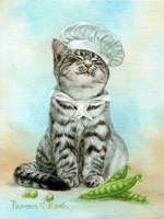 cat chef by Animal75Artist