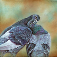 love and doves by Animal75Artist