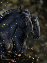 autumn black horses by Animal75Artist