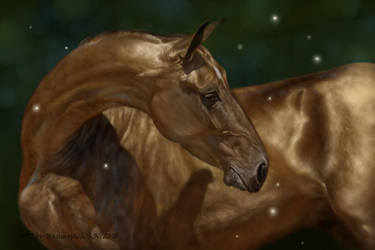 Akhal-Teke gold by Animal75Artist