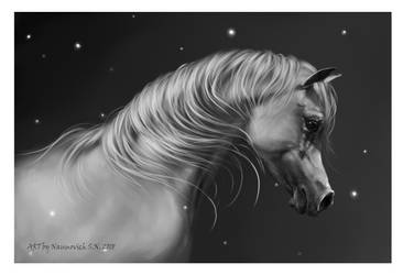 In the moonlight among the stars by Animal75Artist