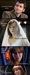 My.Brilliant.Donna by TaiKaze