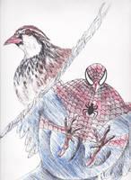 Spiderbird1 by ferretwraith