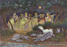 Dance of the mermaids by FunderVogel